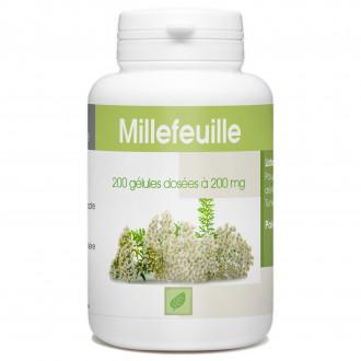 Millefeuille - 200 gélules à 200 mg