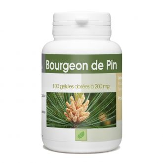 Bourgeon de Pin - 100 gélules à 200 mg