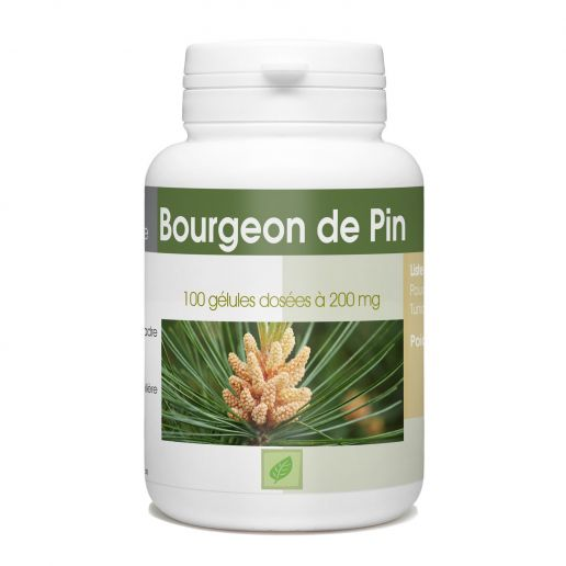 Bourgeon de Pin - 200mg - 100 gélules