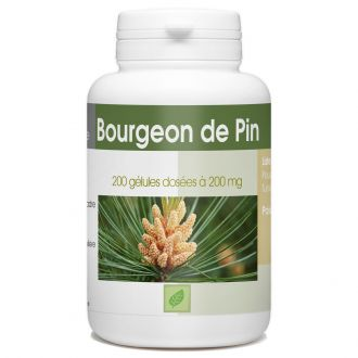 Bourgeon de Pin - 200 gélules à 200 mg