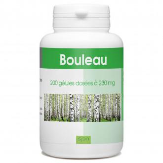Bouleau - 200 gélules à 230 mg