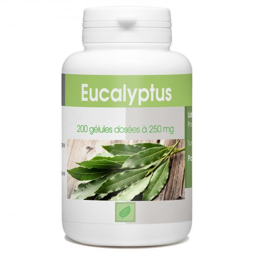 Eucalyptus - 200 gélules