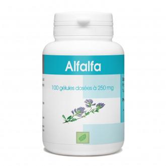 Alfalfa - 100 gélules à 250 mg