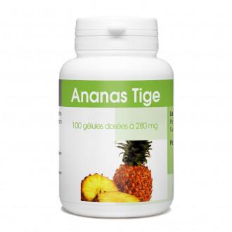 Ananas Tige - 100 gélules à 280 mg