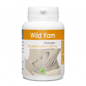 Wild Yam - 300 mg - 80 gélules
