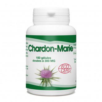 Chardon Marie Bio - 300mg - 100 gélules