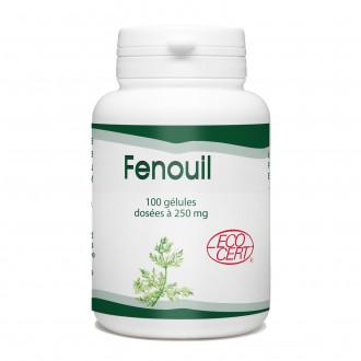 Fenouil Bio - 250 mg- 100 gélules