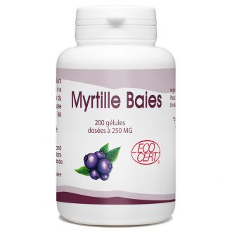 Baies de Myrtille Bio - 250 mg - 200 gélules