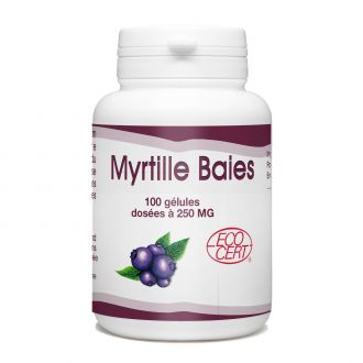 Baies de Myrtilles Bio -250 mg - 100 gélules