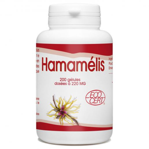 Hamamélis Bio - 200 gélules