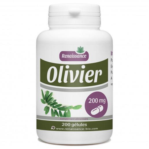 Olivier Feuille - 200 mg - 200 gélules