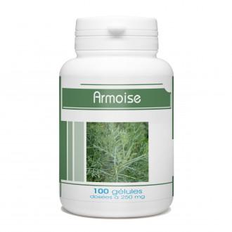 Armoise 100 gélules 250 mg