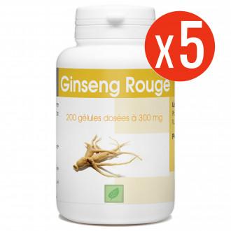 Ginseng Rouge - 300 mg - 1000 gélules