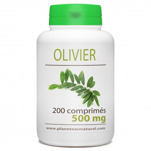 Olivier - 500 mg - 200 comprimés