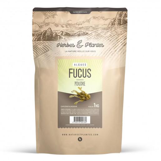 Algue Fucus - 1Kg de poudre
