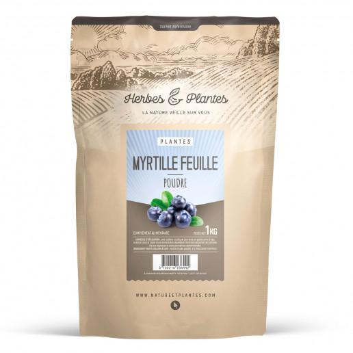 Poudre de Myrtille 1 kg